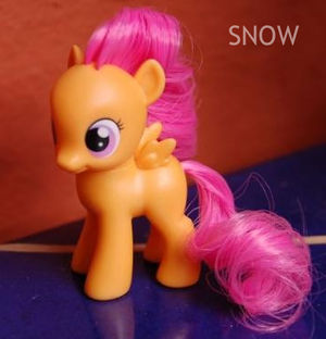 G4 Scootaloo My Little Wiki We believe in helping you find the product that is right for you. my little wiki